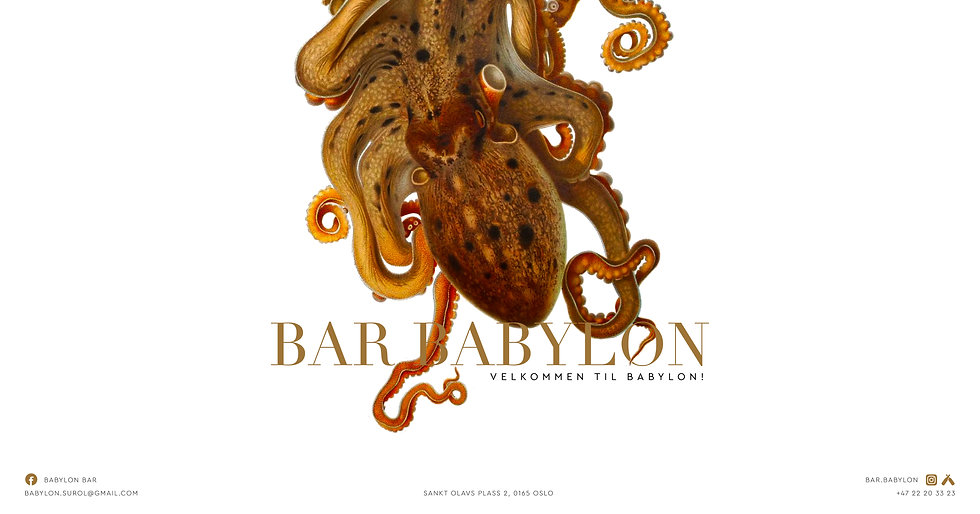 Bar_Babylon_Mock_up_20112020-04.jpg