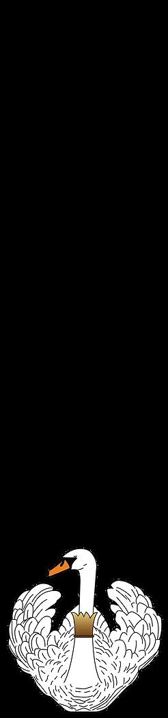 SVANEN_TEXT_BLACK_SWAN-11.png