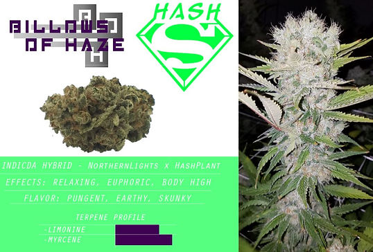 Super Hash.JPG