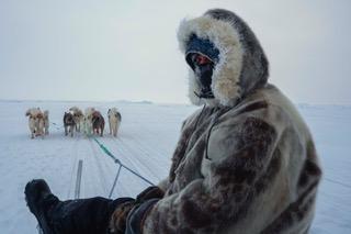 Am I A Greenlander