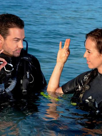160328-SSI-Diving20.jpg