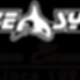 divesystem_logo.png