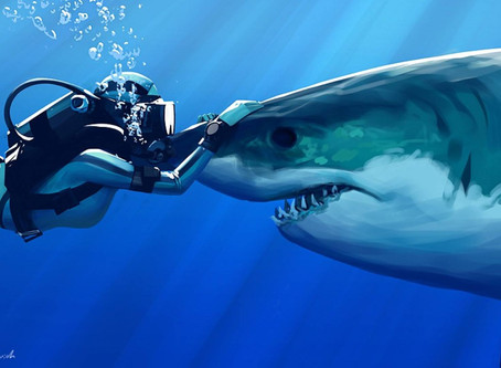 7 conseils pour atteindre l'excellence parmi les plongeurs