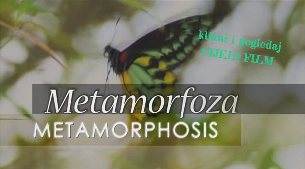 Metamorfoza, dokumentarni film