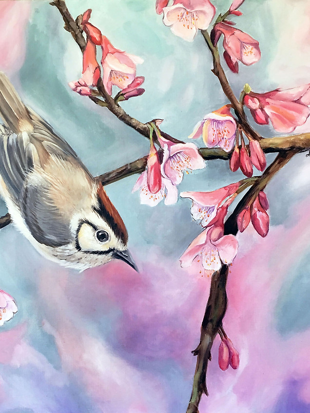 Sparrow-Available