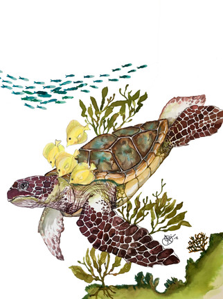 Seaturtle and Friends