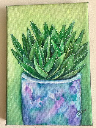 Aloe, aloe
