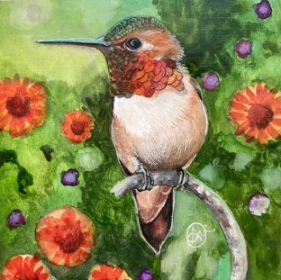 Red throat hummer