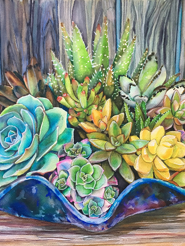 Succulents in a Blue Shell