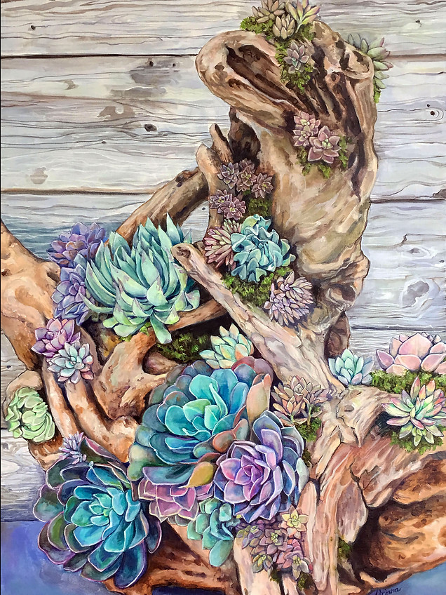 Succulents on Driftwood-Available