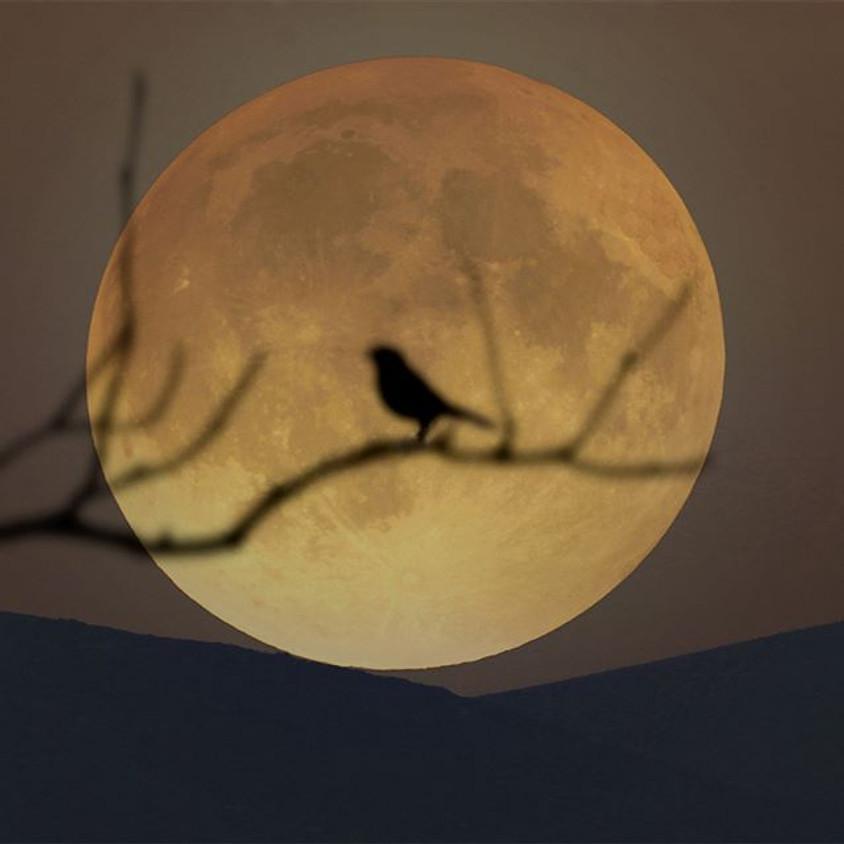 Full Moon Class: the Worm Moon