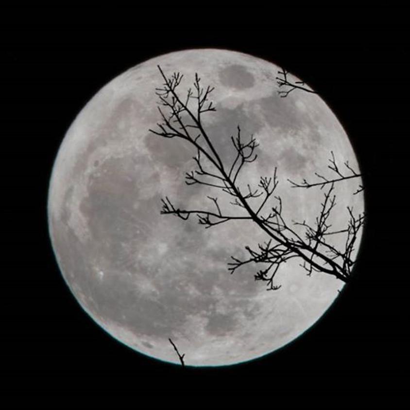 Full Moon Class: The Snow Moon