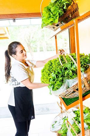 Verduras e Hortaliças Pousada e Restaurante Paiol em Atibaia para levar para casa