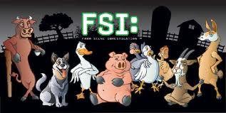 FSI 2.jpg