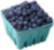 blueberries_edited.png