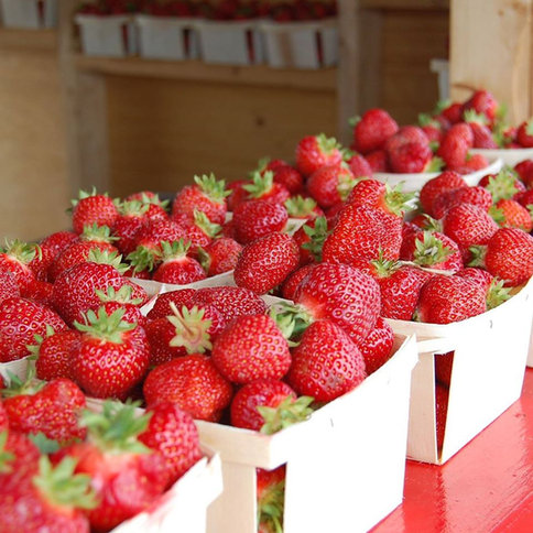 Strawberry Booths