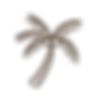 iconos_mango-tours-04.png