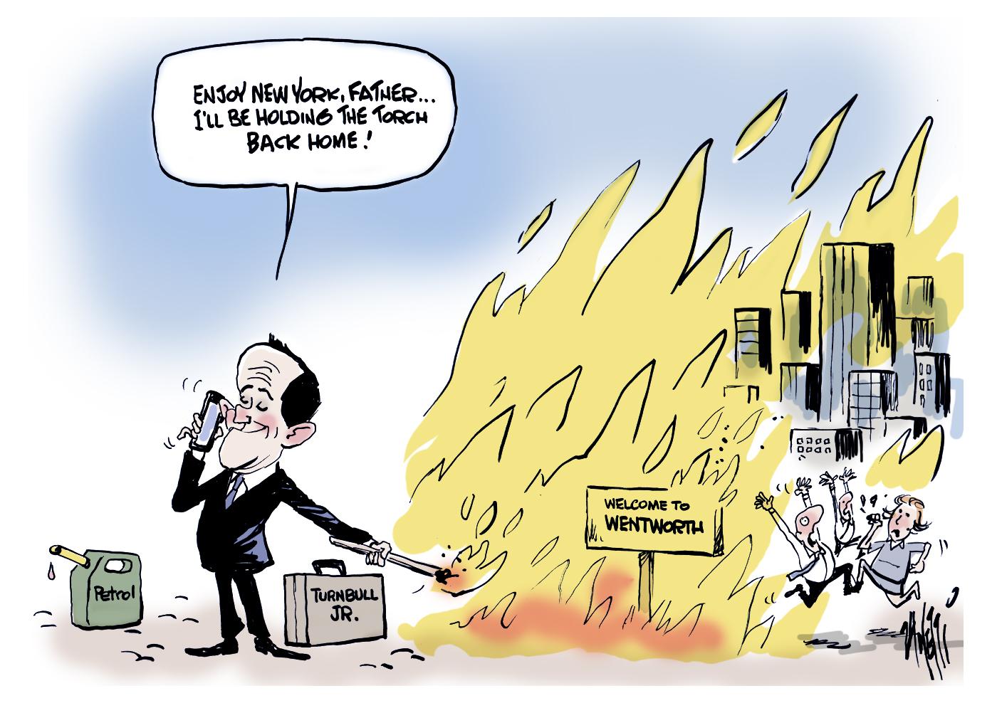 Malcolm Turnbull son Wentworth