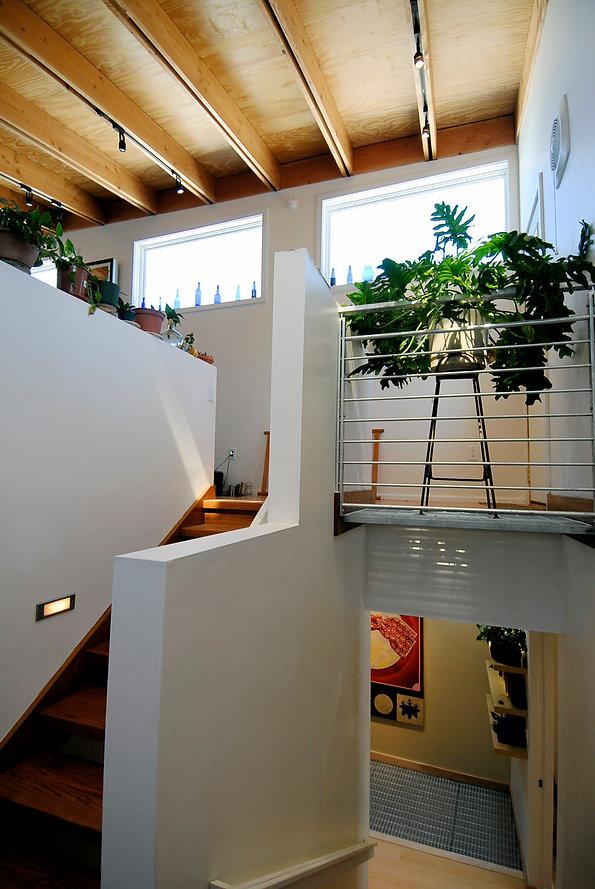 Stairwell landing to studio plants small