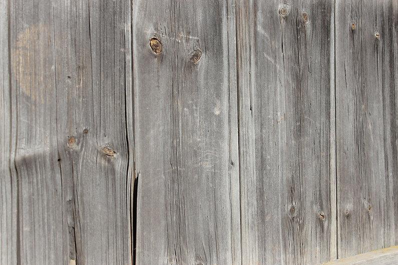Забор.JPG