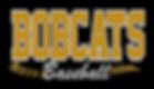 custom glitter logo