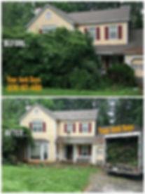 yard debris removal photo.jpeg