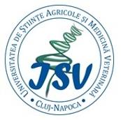 ISV.png