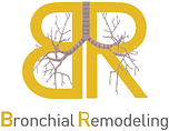 Bronchial remodeling