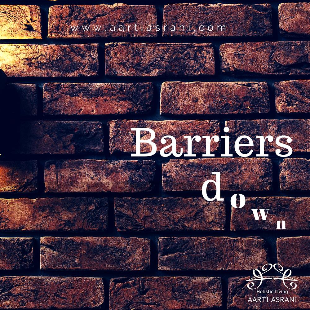 Barriers _ Aarti Asrani