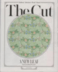 telegraph mag 26.1.19_2small.jpg