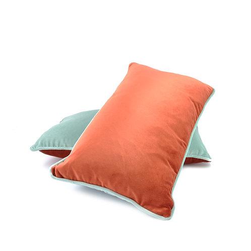 Red & Blue Cushion