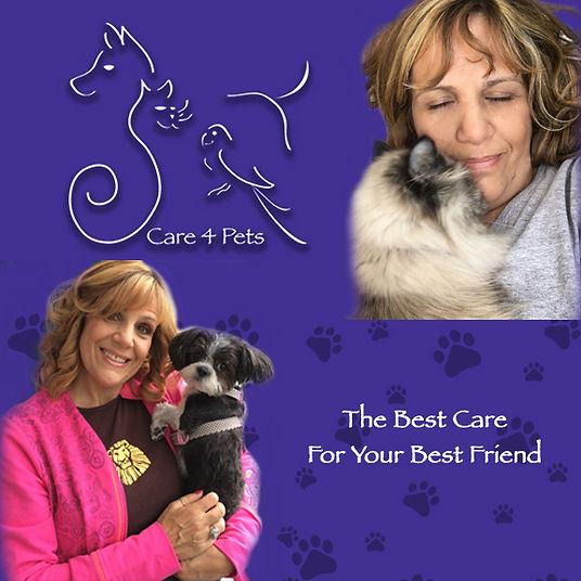 care 4 pets web top.jpg