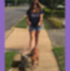 dog walk for website.jpg