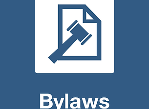 bylaws-icon.png