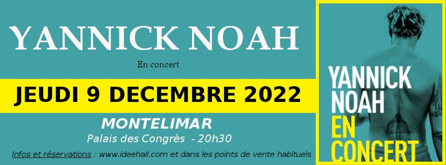 banière reseaux YANNICK NOAH 2022.png