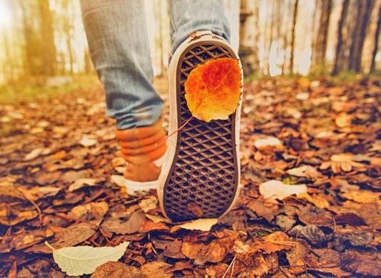 Às vezes é preciso dar um passo para trás