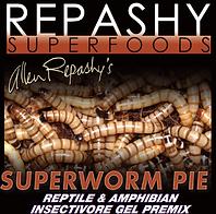 superpworm pie.png