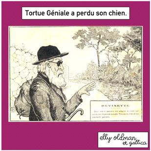 Tortue Géniale
