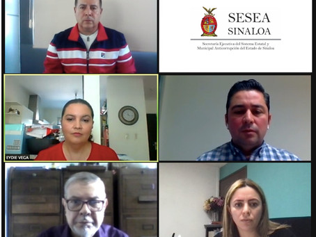Reunión de Grupos de Trabajo sobre RNV 2020 CPC - Mazatlán
