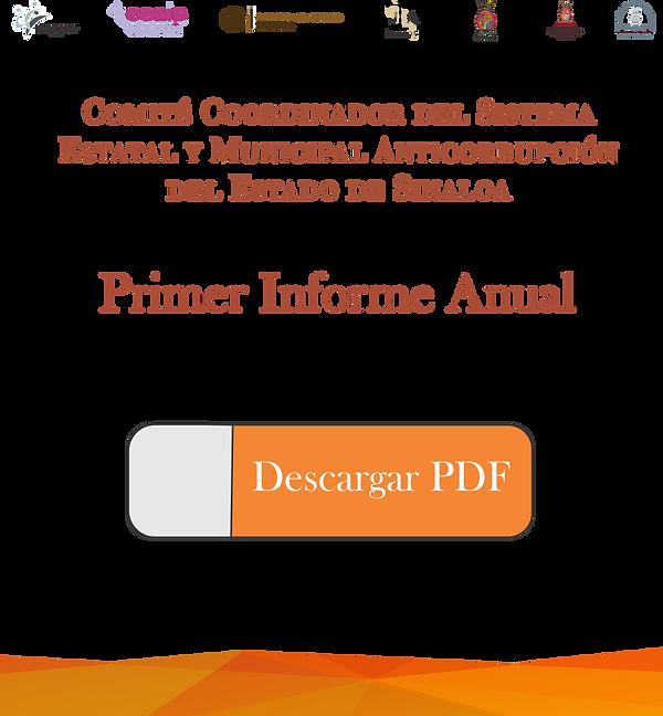 1er Informe USB.png