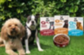 2 dogs Packshots  food bowl.png