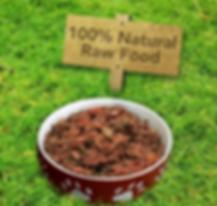 100% Natural Raw Food Bowl.png