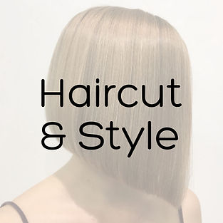 Haircut & Style.jpg