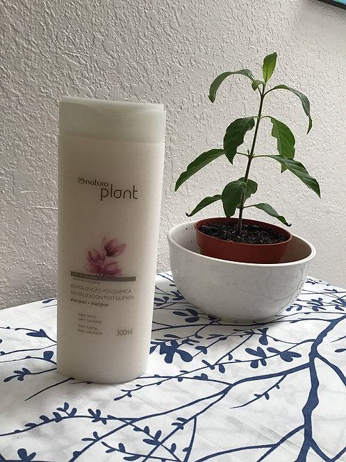 PLANT Shampoo post Quimica 300ml