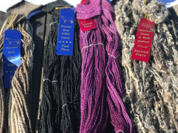 4 Ribbons this year? What?!