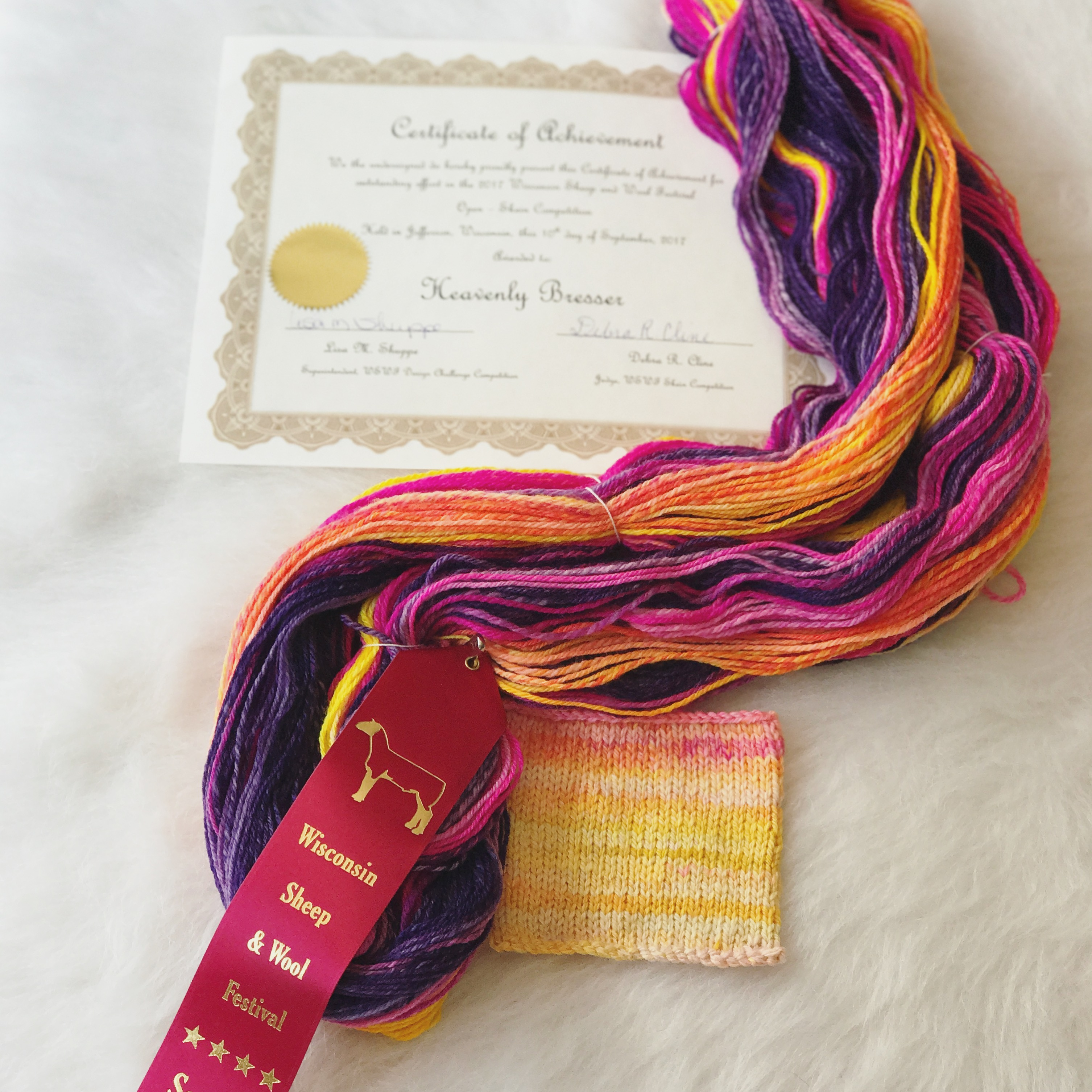 My First Skein Competition