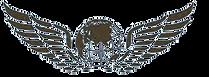 Лого авиаком основное_(бежовый).png