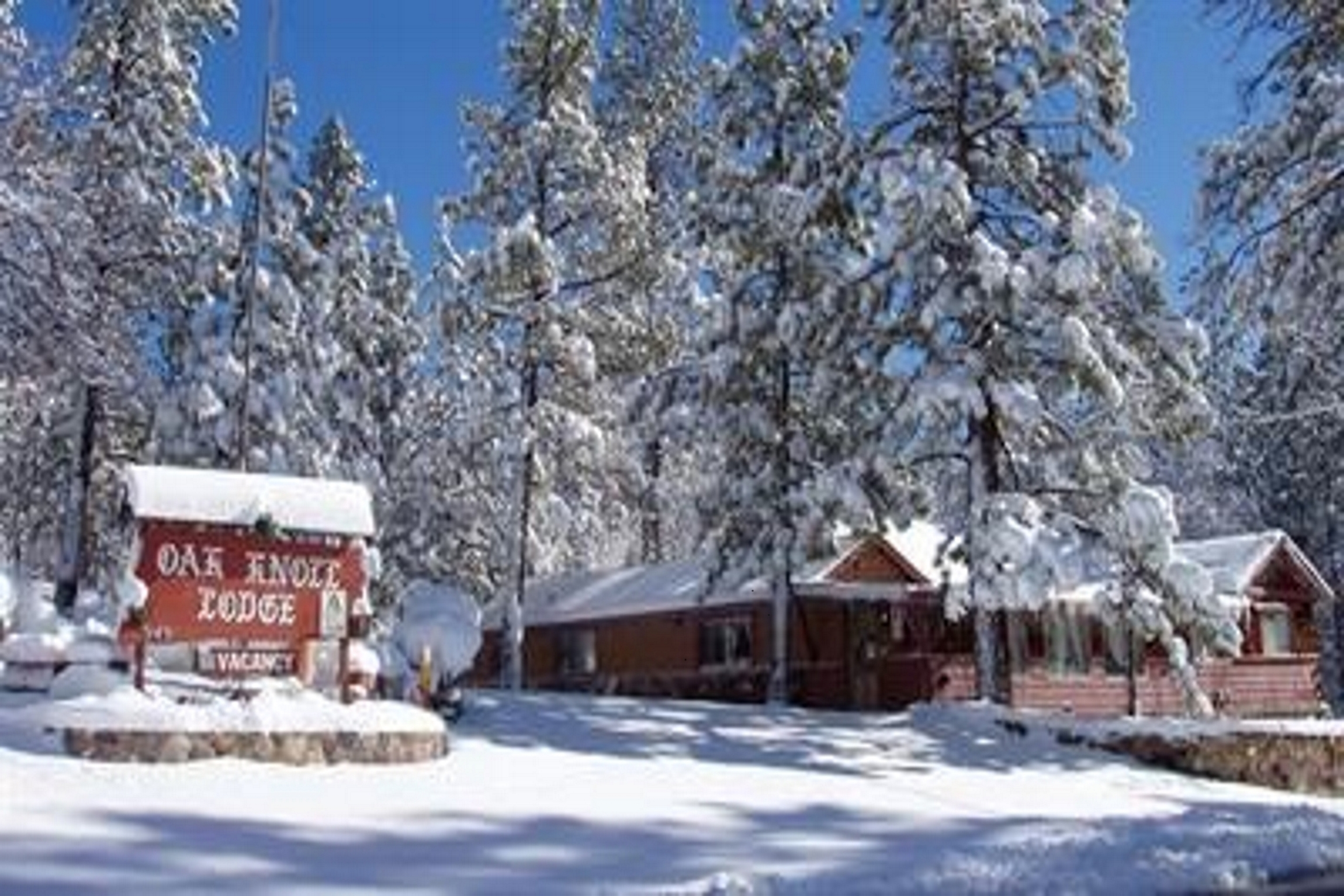 Book Online Cabins In Big Bear Contact Us Oak Knoll Lodge