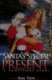 Santa's Special Present.jpg