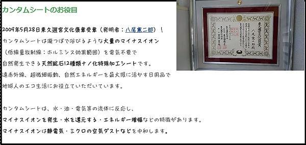 カンタムシートのお役目.jpg